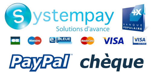 Secured payment SystemPay Paypal Check